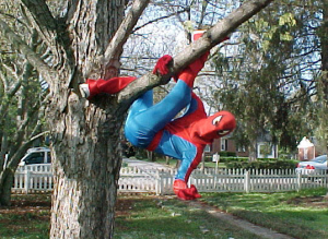 TreeSpiderMan